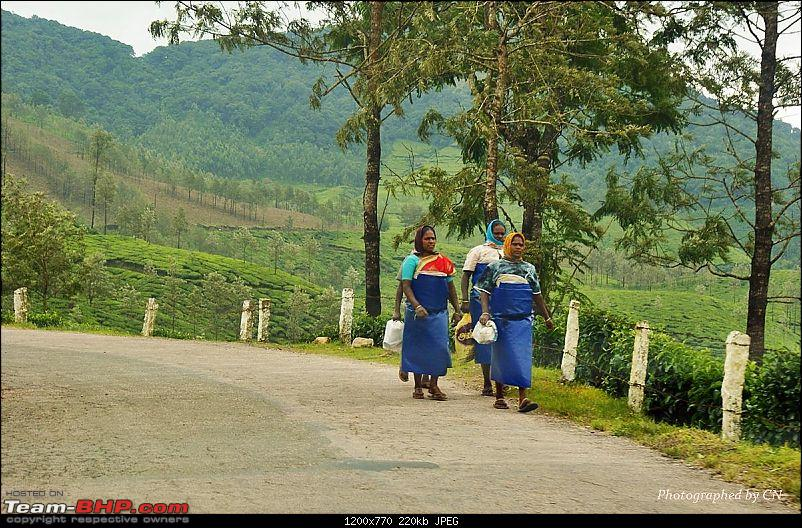 An Incredible Roadtrip to Trivandrum, Velankanni and Mesmerizing Munnar!-13-workers_of_a_tea_factory.jpg