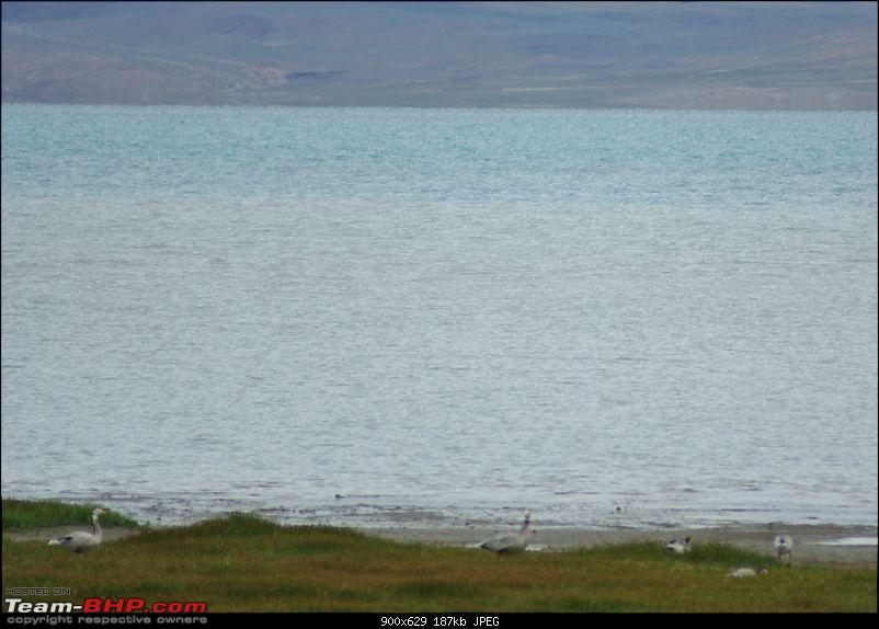 When I Went Walking To Tibet - Kailash Mansarovar Yatra-2011-dsc07567.jpg