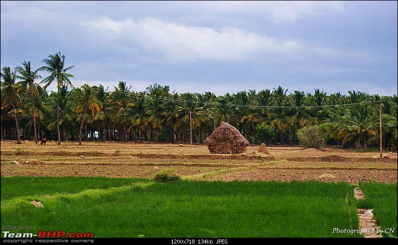 An Incredible Roadtrip to Trivandrum, Velankanni and Mesmerizing Munnar!-19-a_small_hut.jpg