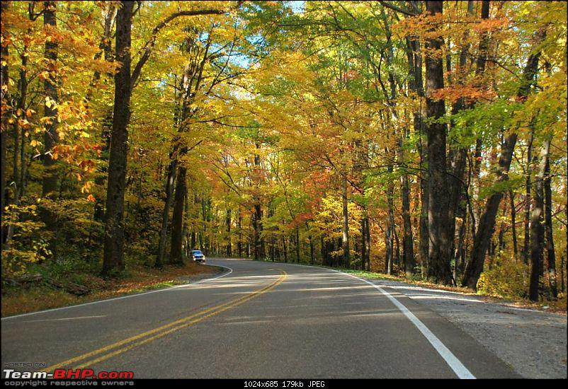 The FALLen trees, The SMOKYing Mountains, The MAZDA-dsc_0125-large.jpg