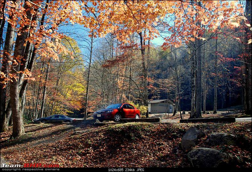 The FALLen trees, The SMOKYing Mountains, The MAZDA-dsc_0066-large.jpg