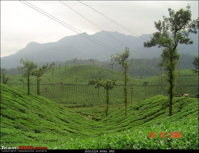 Magical Wayanad-dsc00099.jpg