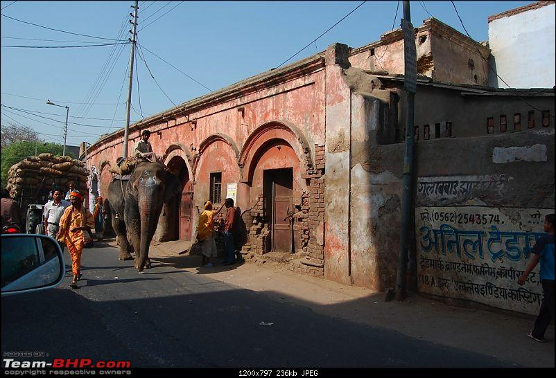 A YetiHoliday® - TheOne® visits India for the first time.-dsc_0143_thumb.jpg