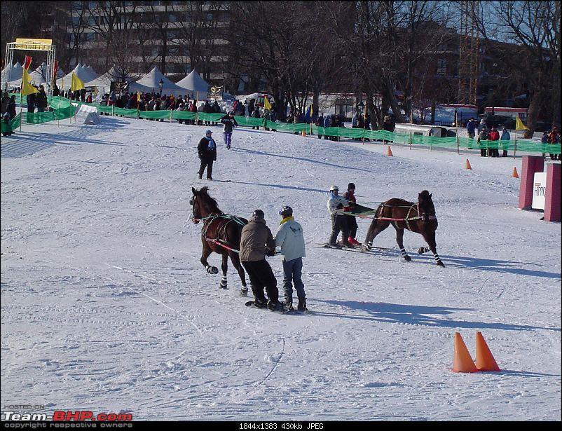 Quebec City Photo Blog-dsc01101.jpg