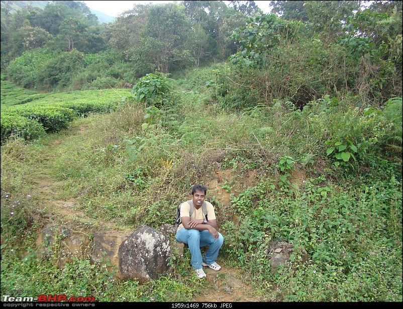 Anniversary trip to Waynad turns adventurous!-dsc09031.jpg