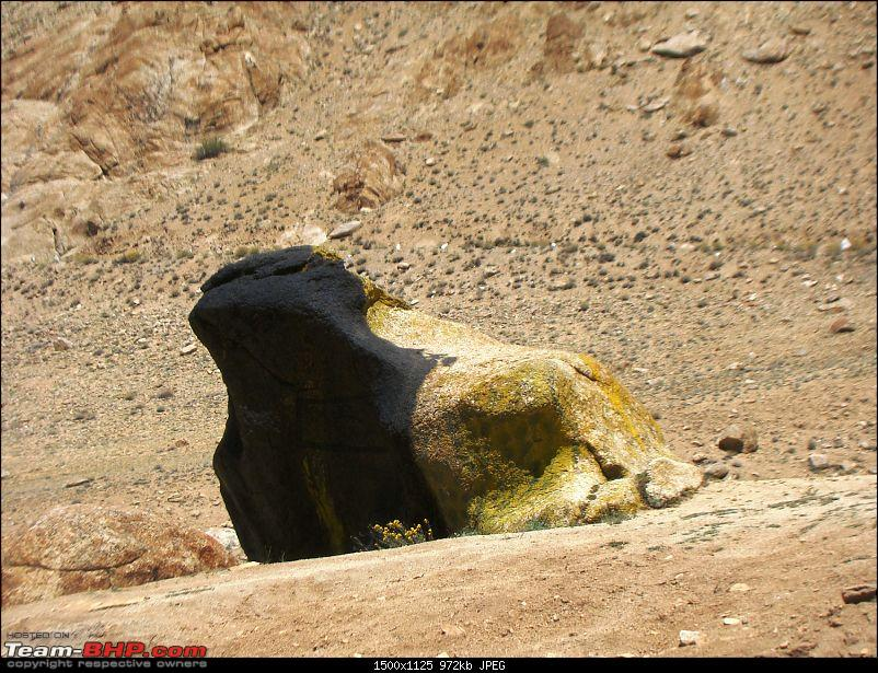 Ladakh: A sojourn to the roof of the world�over 21 days and 6500kms!!-d12-13-bro-toad-near-leh.jpg