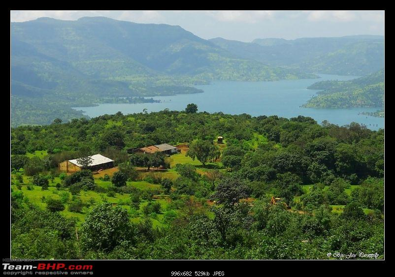 2011 Post Monsoon Trips : Kaas and Bamnoli, a photographer's paradise.-p1050273.jpg