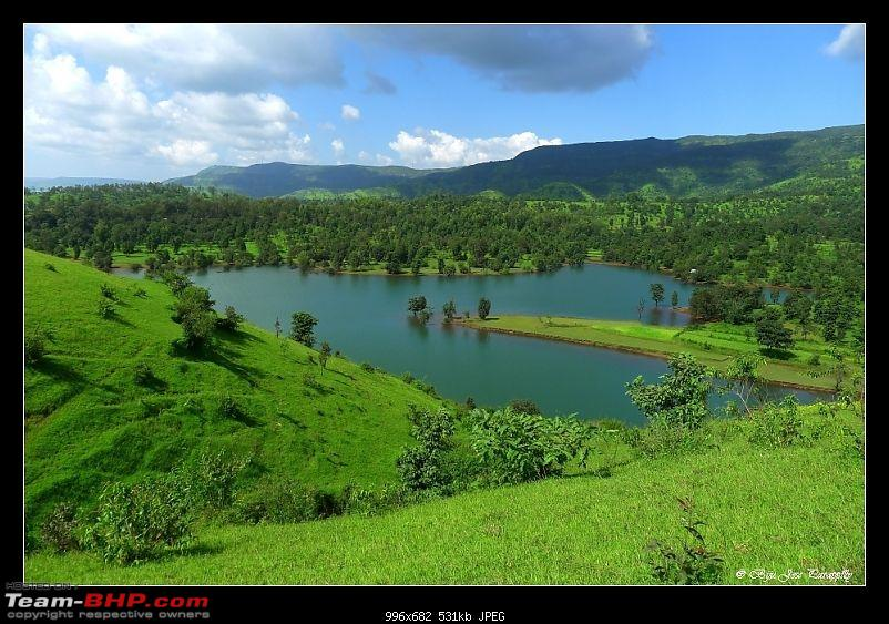 2011 Post Monsoon Trips : Kaas and Bamnoli, a photographer's paradise.-p1050360.jpg