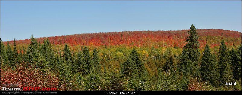North Shore Scenic Drive - Fall 2011-fall-colors-superior-national-forest-2.jpg