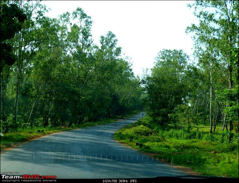 The Road To the Sea. Bangalore - Goa - Bangalore. Again!-p1000318.jpg