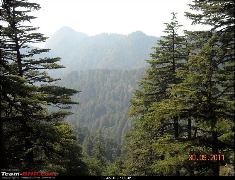 Himalayan Eco-system at Chakrata in Uttarakhand-dscn1413.jpg