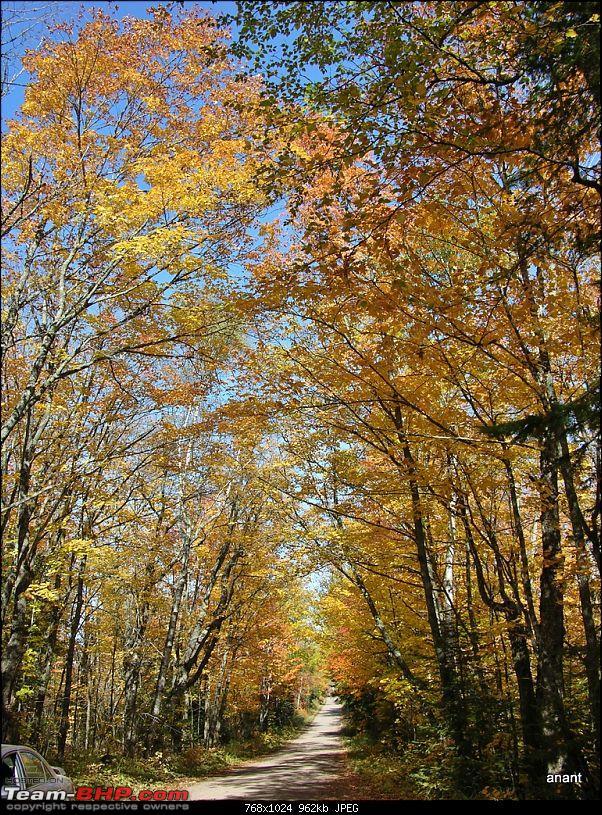 North Shore Scenic Drive - Fall 2011-dscn0240.jpg