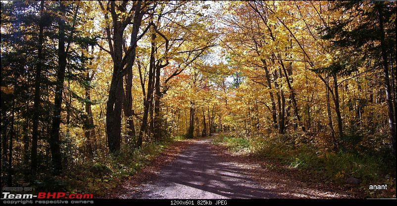 North Shore Scenic Drive - Fall 2011-fall-colors-forest-rd-166-.jpg