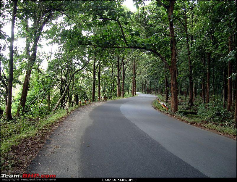 Malnad In Monsoons-dsc02892.jpg