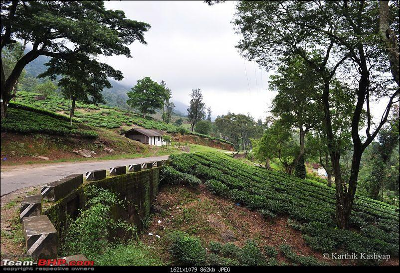 The Jet� flies to Munnar: A 1000 km blast to God's own mountains-dsc_0080.jpg