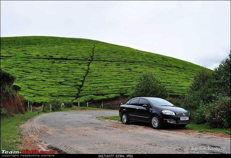 The Jet� flies to Munnar: A 1000 km blast to God's own mountains-dsc_0205.jpg