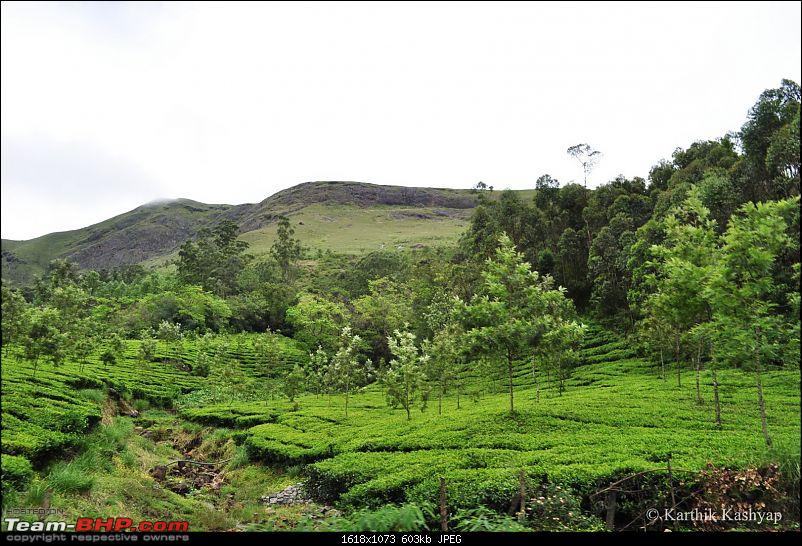 The Jet� flies to Munnar: A 1000 km blast to God's own mountains-dsc_0410.jpg