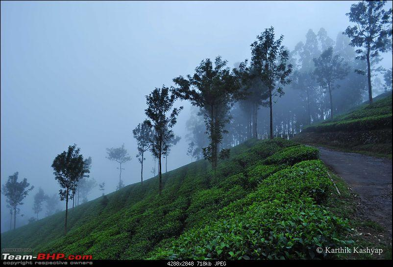 The Jet� flies to Munnar: A 1000 km blast to God's own mountains-dsc_0573.jpg