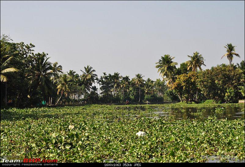 Lakshadweep: Paradise Islands - A tryst with the sun, sand, lagoons and corals-dsc_0745.jpg