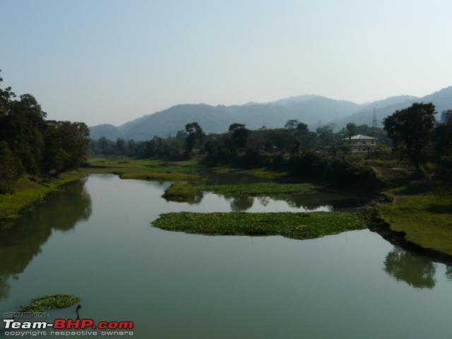 Name:  kaziranga_12 31_0177.jpg Views: 1725 Size:  21.8 KB