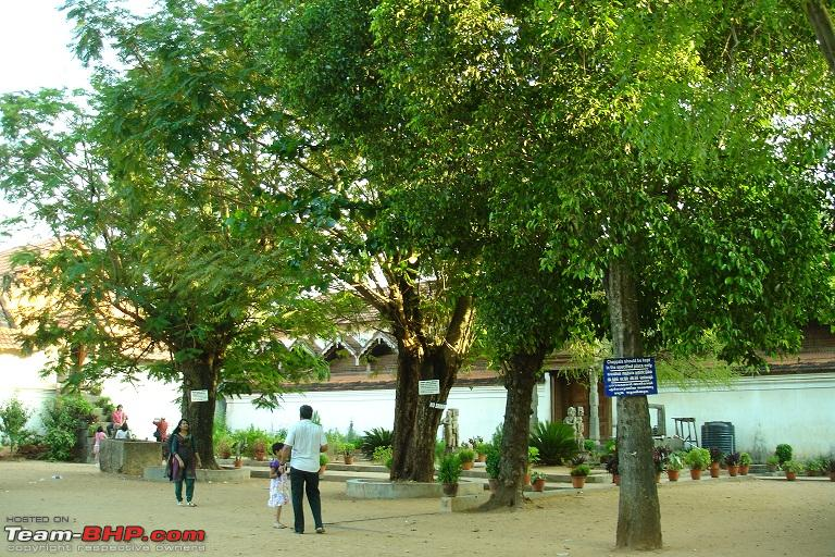 Name:  3.External Courtyard in front of building.JPG