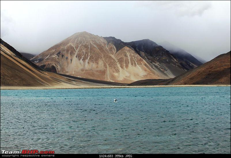 HumbLeh'd II (Indo Polish Himalayan Expedition to Ladakh & Himachal Pradesh)-img_0642.jpg