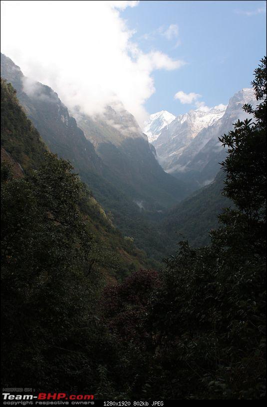 Annapurna Sanctuary Trek, Nov. 2011-img_1396.jpg