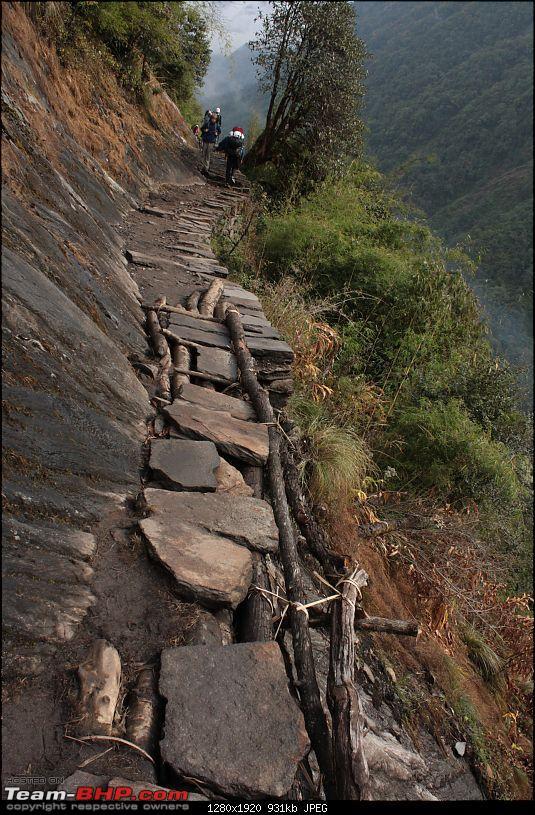 Annapurna Sanctuary Trek, Nov. 2011-img_1399.jpg