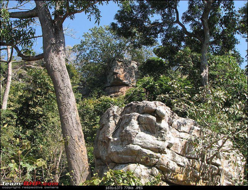 Safari Dicor LX VTT-TMT Xtreme Travel - Orissa's Unkown Forests: Debrigarh & Sunabeda-img_8935e.jpg
