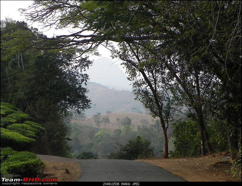 Wayanad - 'Gods Own District' in 'Gods Own Country'!!..-dscn6551-copy.jpg