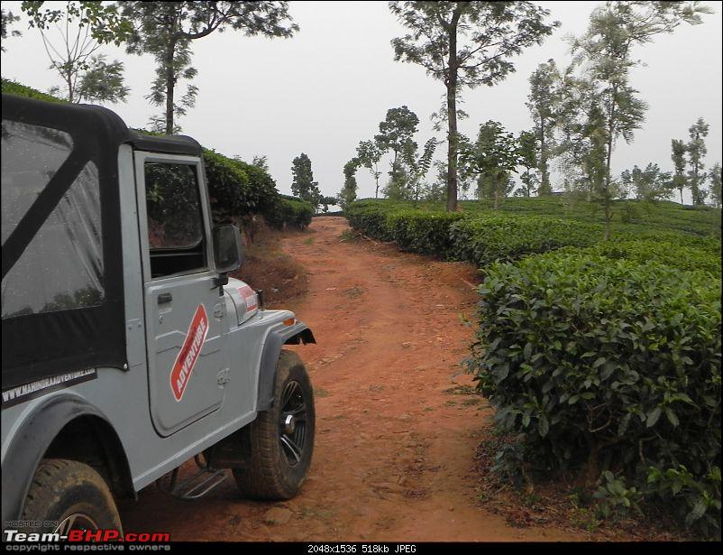 Wayanad - 'Gods Own District' in 'Gods Own Country'!!..-dscn6647-copy.jpg