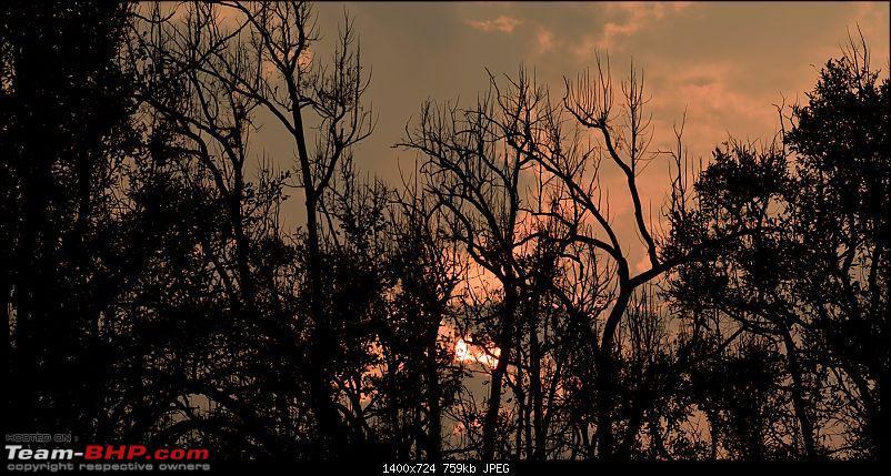 Kanha National Park: Photologue-_a0r9215less1m.jpg