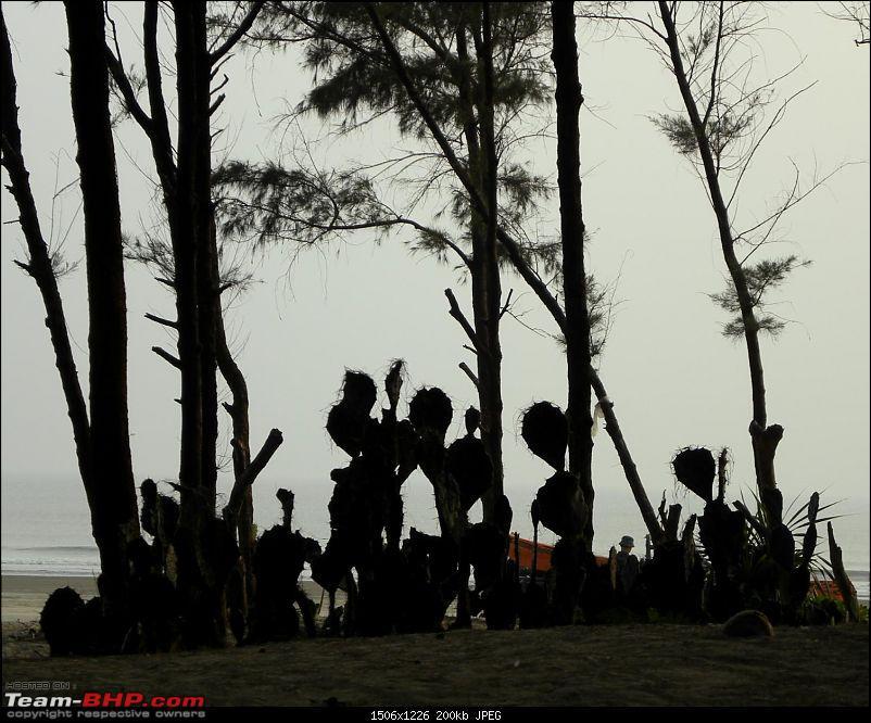 A Quiet Getaway @ Tajpur-dscn3274.jpg