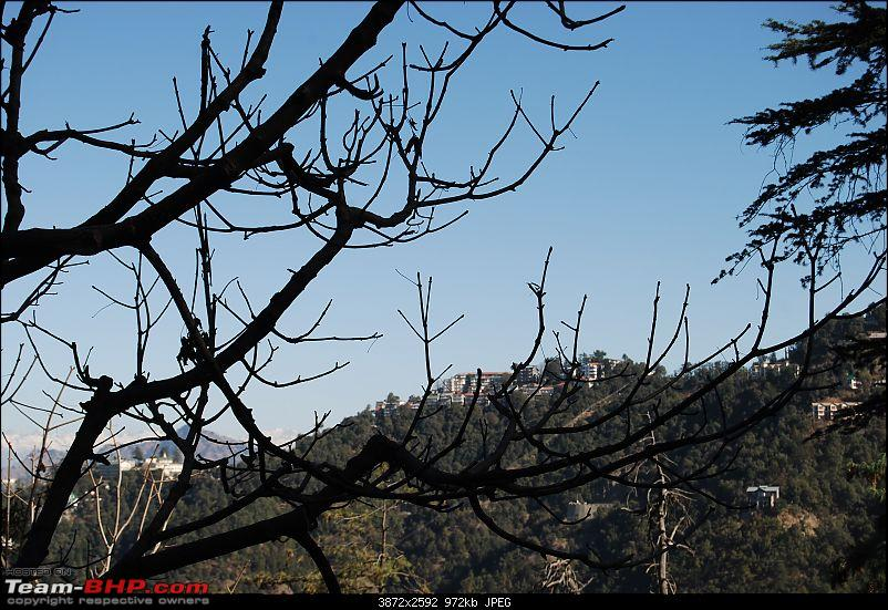 Cold,Nippy,Frosty,Chilly Escapade to Himachal Pradesh !!!!-dsc_5024.jpg