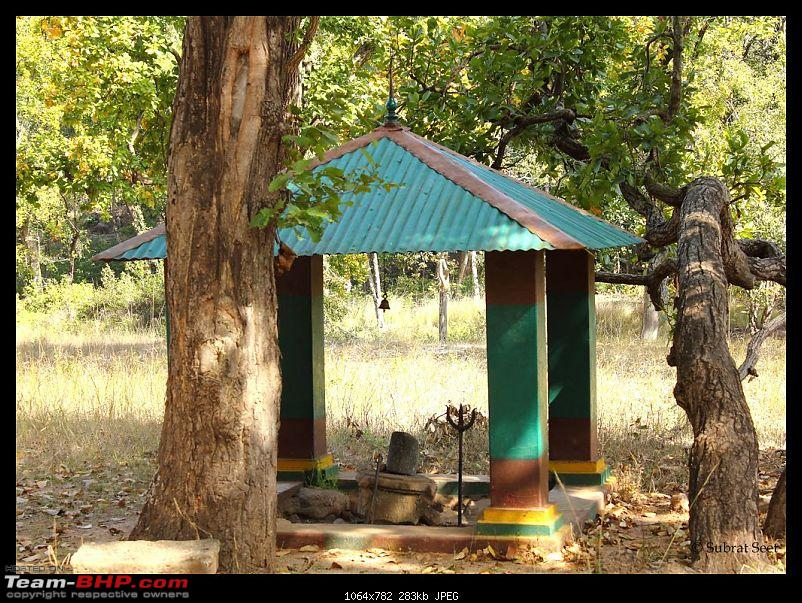 Bandhavgarh - A Different Perspective-sidhbaba107-copy.jpg