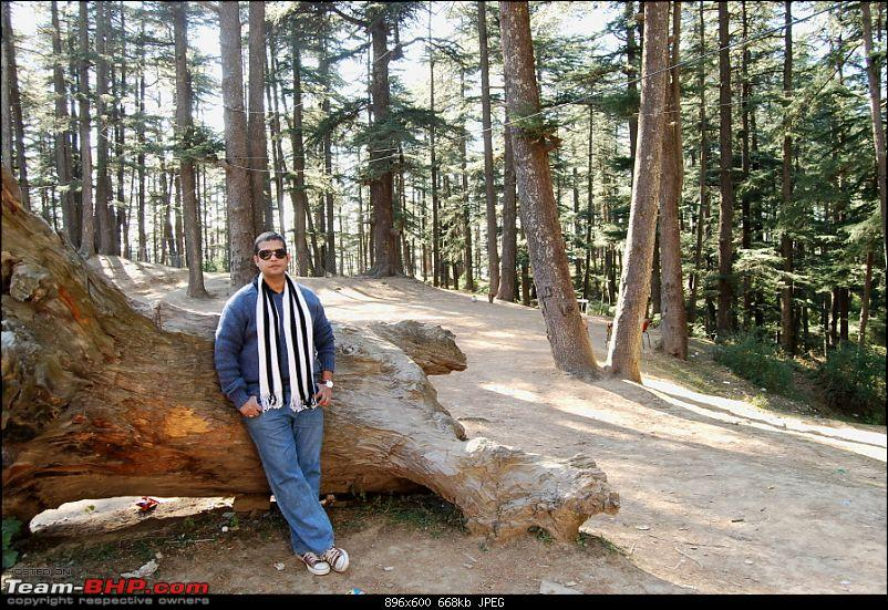 Cold,Nippy,Frosty,Chilly Escapade to Himachal Pradesh !!!!-dsc_5156.jpg