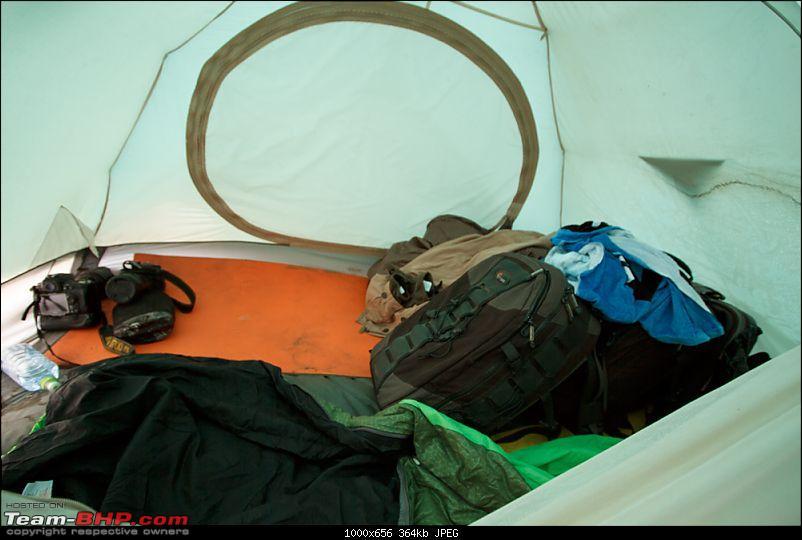 Bears, Volcanoes & what not, Far East Russia: Photologue-_mg_8652.jpg