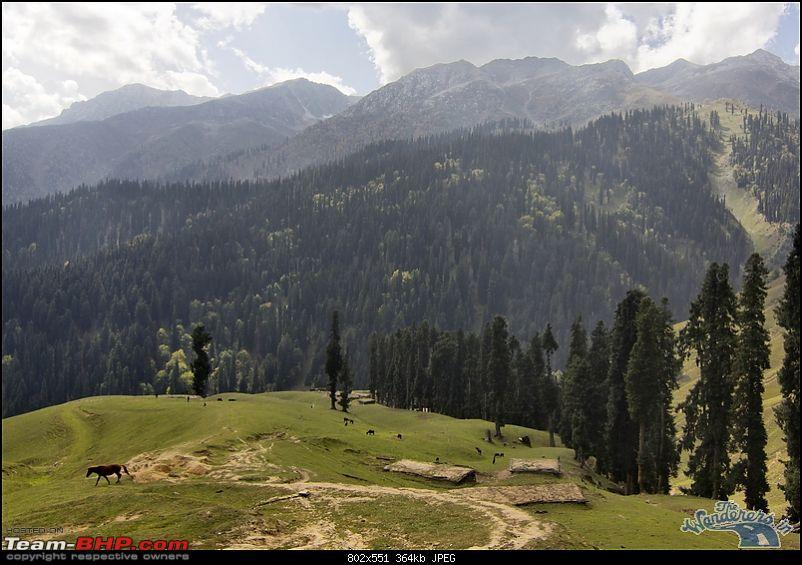"Self-Drive Exploratory Expedition->Zanskar+Unknown Kashmir-> ""off-season October 2011-img_7268.jpg"