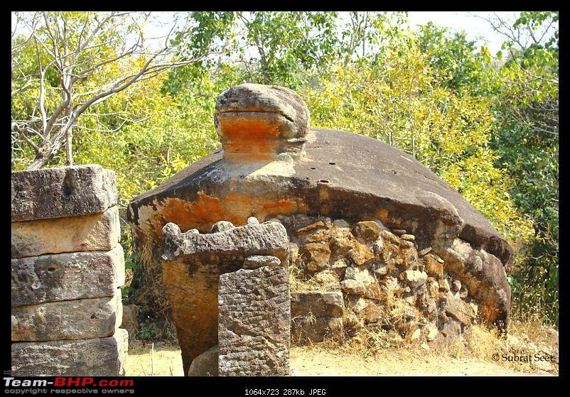 Bandhavgarh - A Different Perspective-tortoise-fort53-copy.jpg