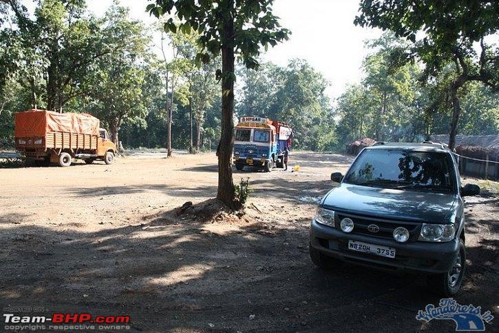 Name:  Chhattisgarh Wild Buffalo1.jpg Views: 4784 Size:  250.6 KB