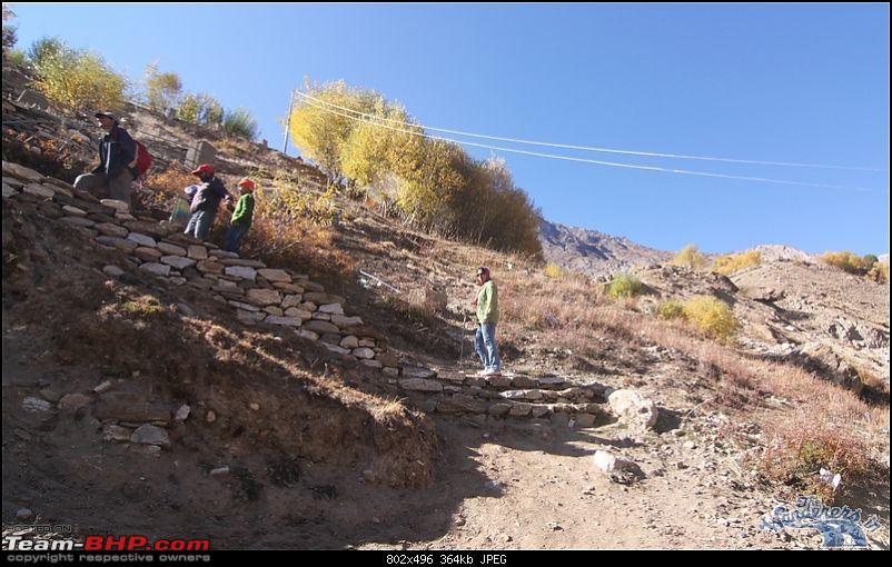 "Self-Drive Exploratory Expedition->Zanskar+Unknown Kashmir-> ""off-season October 2011-img_7641.jpg"
