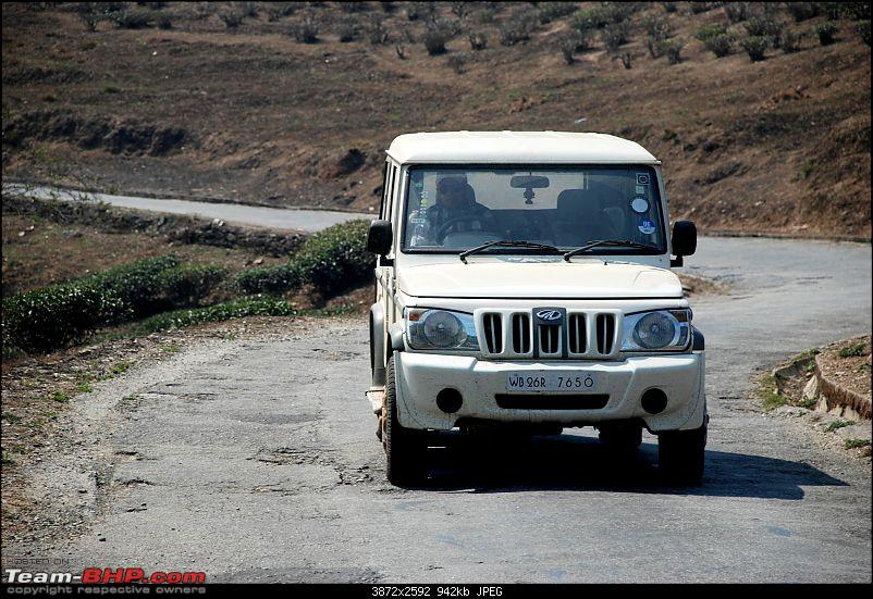 Destination Sandakphu, the Land Rover territory. Update - another trip till Phalut-dsc_4516.jpg