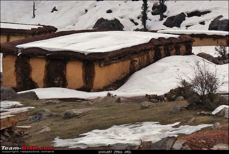 Jammu, Suchetgarh, the Indo-Pak Border & more-dsc08660.jpg