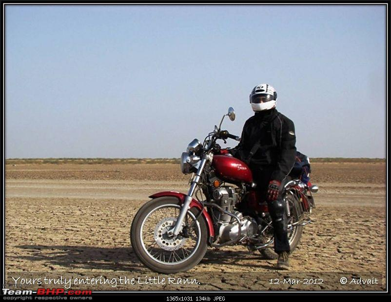 The Bird and The Rann-12mar-picture-495.jpg