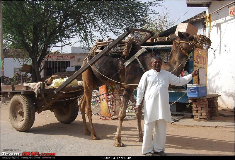 A YetiHoliday� - TheOne� visits India for the first time.-dsc_0011_thumb.jpg