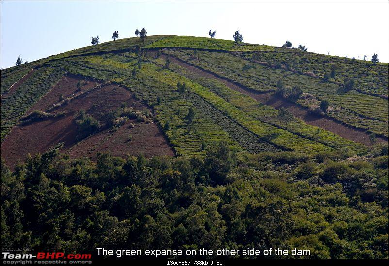 Fauji's Drivologues:- Beat the heat - A quick escape to Red Hills, Ooty-dsc_0384.jpg