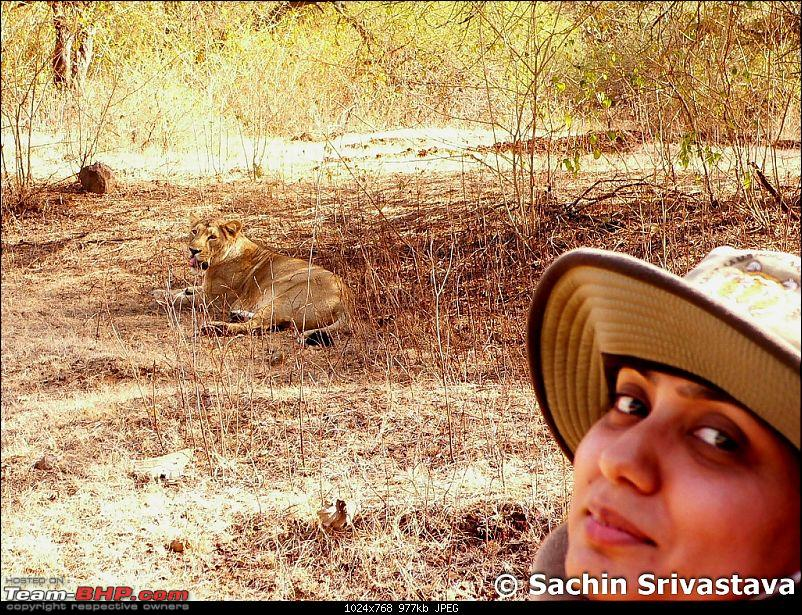 Visit to Gir forest - the only natural habitat for Asiatic Lion!-p1040759.jpg