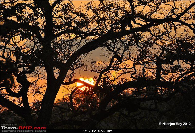 Exploring the Great Indian Outdoors-dsc_2143.jpg