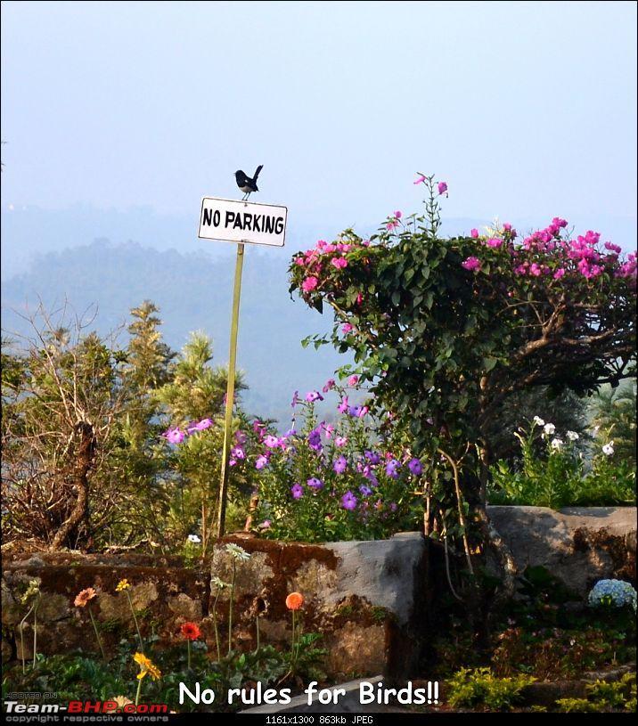 Fauji's Drivologues :- Beat the heat II - Escape to Sinnadorai's Bungalow in Valparai-dsc_0926.jpg