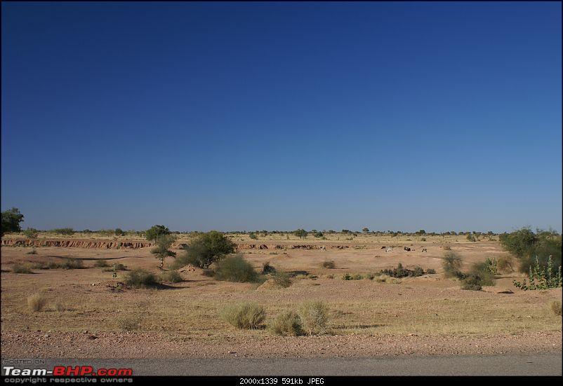 Xmas in The Great Indian Thar Desert-dsc04979-copy.jpg